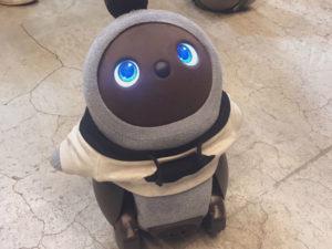愛されるために生まれたLOVOT(ラボット)の写真